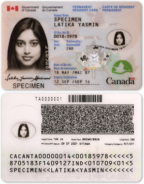 Image result for canada permanent resident card
